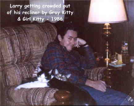 Larry getting crowed out of his recliner by Gray Kitty & Girl Kitty - 1986
